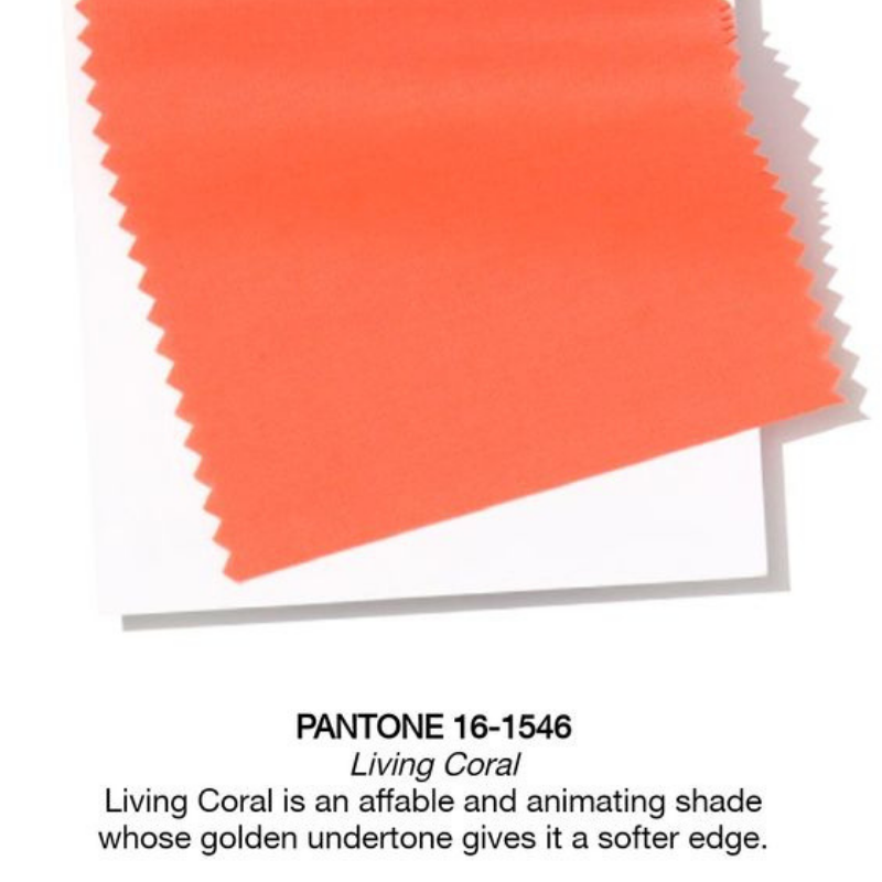 Pantone Colour Of The Year_ Coral Will Warm Your Dining Room Design (2)