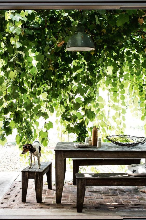 Dining Room Decor Ideas The Outdoor Essentials 2